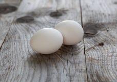 2 белых яичка Стоковое Изображение RF
