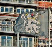 Бельгийский флаг льва Стоковая Фотография