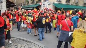 Бельгия в Лионе сток-видео