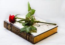 Библия и Rose Стоковая Фотография RF