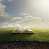 Библия на траве. Стоковое Фото