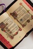 библия открытая Стоковые Фотографии RF