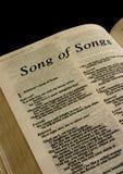 библия святейшая стоковое изображение