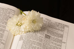 Библия (взгляд 4) стоковое фото