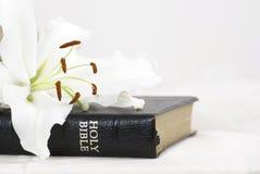 Библия и цветок Стоковое Фото