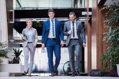 Бизнесмены группы Стоковое фото RF