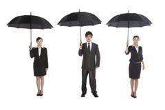 3 бизнесмены держа зонтик Стоковое Изображение RF