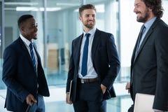 Бизнесмены имея переговор стоковое фото