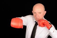 бизнесмен боксера Стоковое Изображение RF