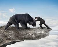 Бизнесмен воюя против черного медведя на скале с небом заволакивает Стоковая Фотография RF