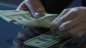 Бизнесмен вручает подсчитывать долларовые банкноты на таблице, противозаконные дела, финансовое злодеяние сток-видео