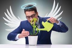 Бизнесмен в будущем концепции инвестора ангела растущем приносит пользу Стоковые Изображения