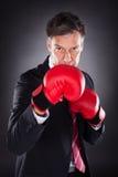 Бизнесмен в красных перчатках бокса Стоковое фото RF