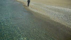 Бизнесмен гуляет вдоль пляжа в костюме восхищает красивый пляж сток-видео
