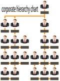 Бизнесмен диаграммы корпоративной иерархии Стоковое фото RF