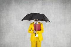 Бизнесмен защищает данные, под зонтиком Стоковые Изображения RF