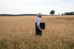 Бизнесмен исследует в пшеничном поле стоковое фото rf