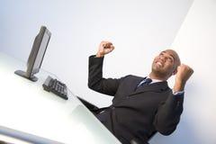 бизнесмен ликующий Стоковые Изображения RF