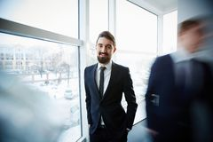 Бизнесмен окном Стоковое Изображение