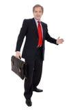 бизнесмен портфеля стоковые изображения