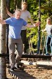 Бизнесмен при сотрудники пересекая мост журнала в лесе Стоковое Фото