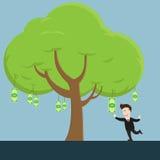 Бизнесмен собирает счет денег от дерева Стоковые Фото