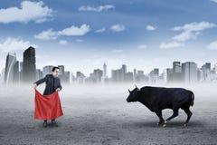 Бизнесмен с сумашедшим быком стоковые фото