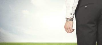 Бизнесмен с лугом Стоковое Изображение RF