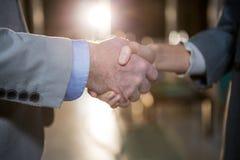 Бизнесмен тряся руки с коллегой Стоковое Изображение RF