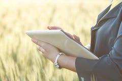 Бизнес-леди используя цифровую таблетку в поле Стоковая Фотография