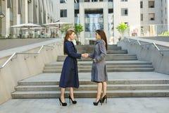 2 бизнес-леди в пальто обсуждают на предпосылке  Стоковое Изображение