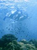 бикини snorkeling Стоковое Изображение
