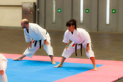 БИЛЬБАО, ИСПАНИЯ - 27-ОЕ ФЕВРАЛЯ: Демонстрация людьми и факультетами женщин японских традиционных боевых искусств в III Bi выходн стоковое фото rf