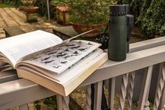 Бинокли и гид птицы стоковое изображение rf