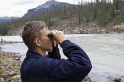 бинокли смотря ренджера парка Стоковые Фотографии RF