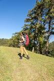 Бинокли на горе, небо взгляда женщины Hiker предпосылки голубое Стоковое фото RF