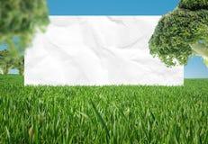 биологическая еда Стоковое фото RF
