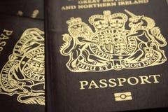 биометрическое passports1 Стоковая Фотография RF