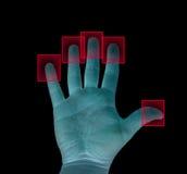 биометрическо стоковое фото