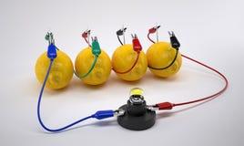 Био батарея Стоковая Фотография RF