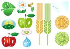 био вектор eco установленный иконами Стоковая Фотография