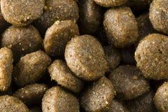 Био еда для собак стоковые изображения rf