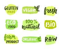 Био естественная концепция еды Стоковое Изображение RF