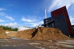 био сила завода топлива Стоковое Изображение