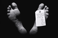 Бирка пальца ноги стоковая фотография rf