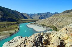 Бирюза Katun в осени, горе Altai стоковые фото