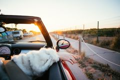 Битники пар в влюбленности едут автомобиль с откидным верхом в лете стоковые изображения