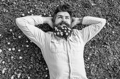 Битник на расслабленной стороне кладет на траву, взгляд сверху Концепция умиротворения Гай смотрит славно с цветками маргаритки и стоковая фотография