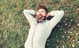 Битник на спокойной стороне кладет на траву, взгляд сверху Концепция умиротворения Гай смотрит славно с маргаритки или стоцвета ц стоковое фото