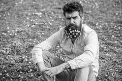 Битник на спокойной стороне сидит на траве Естественная концепция ухода за волосами Гай смотрит славно с цветками маргаритки или  стоковые фотографии rf